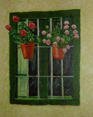 20070219085519-ventana.jpg